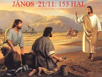 http://www.hajnalhasadas.hupont.hu/felhasznalok_uj/9/7/97813/kepfeltoltes/kicsi/153.jpg?53898626